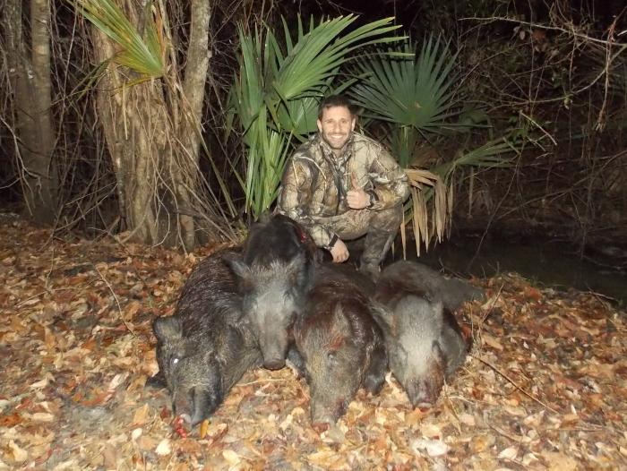375 H&H Hogs