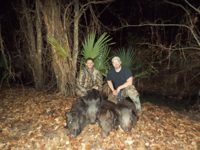 4 Hogs 1 Hunt