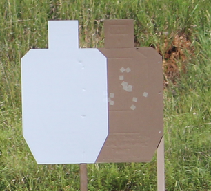 No Shoot Target.png