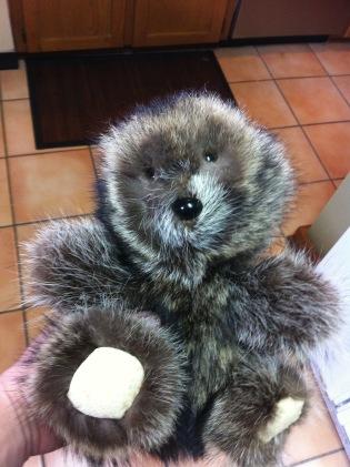 Racoon Skin Teddy Bear.jpg